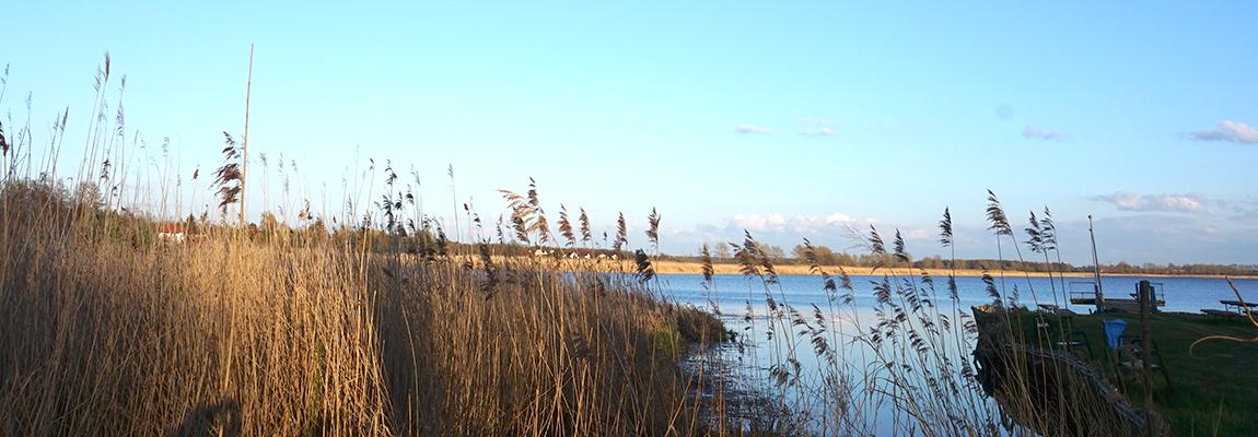 Tuż obok Jezioro Jamno